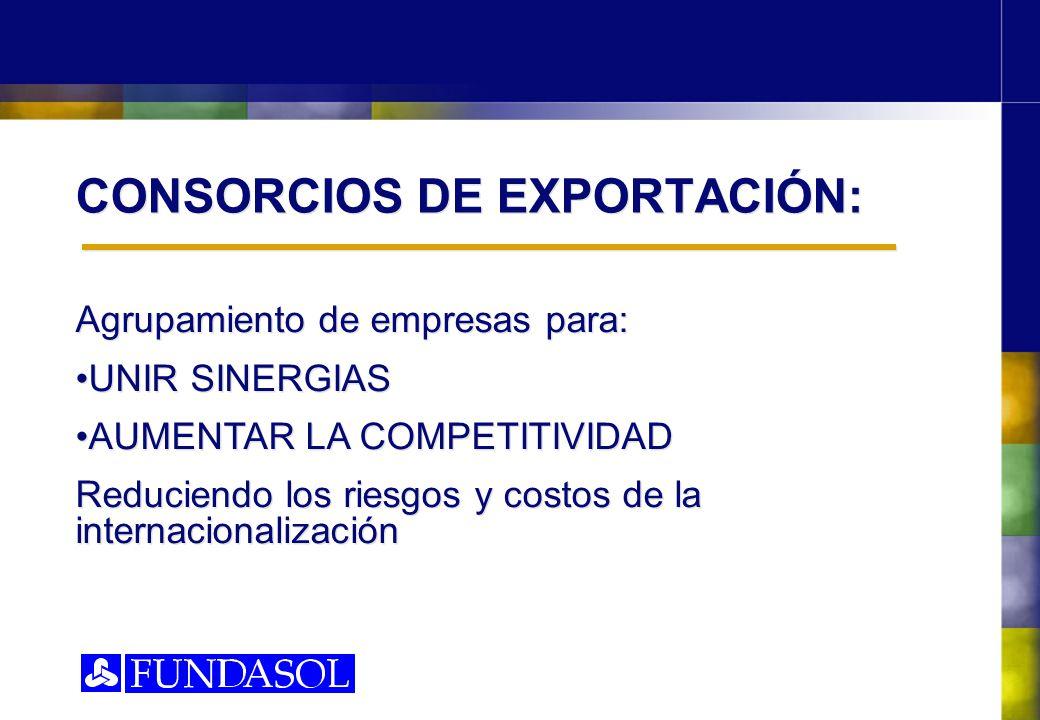 CONSORCIOS DE EXPORTACIÓN: Agrupamiento de empresas para: UNIR SINERGIAS AUMENTAR LA COMPETITIVIDAD Reduciendo los riesgos y costos de la internaciona