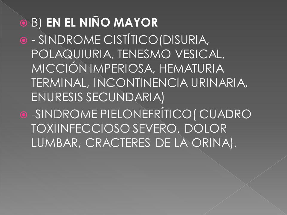 B) EN EL NIÑO MAYOR - SINDROME CISTÍTICO(DISURIA, POLAQUIURIA, TENESMO VESICAL, MICCIÓN IMPERIOSA, HEMATURIA TERMINAL, INCONTINENCIA URINARIA, ENURESI