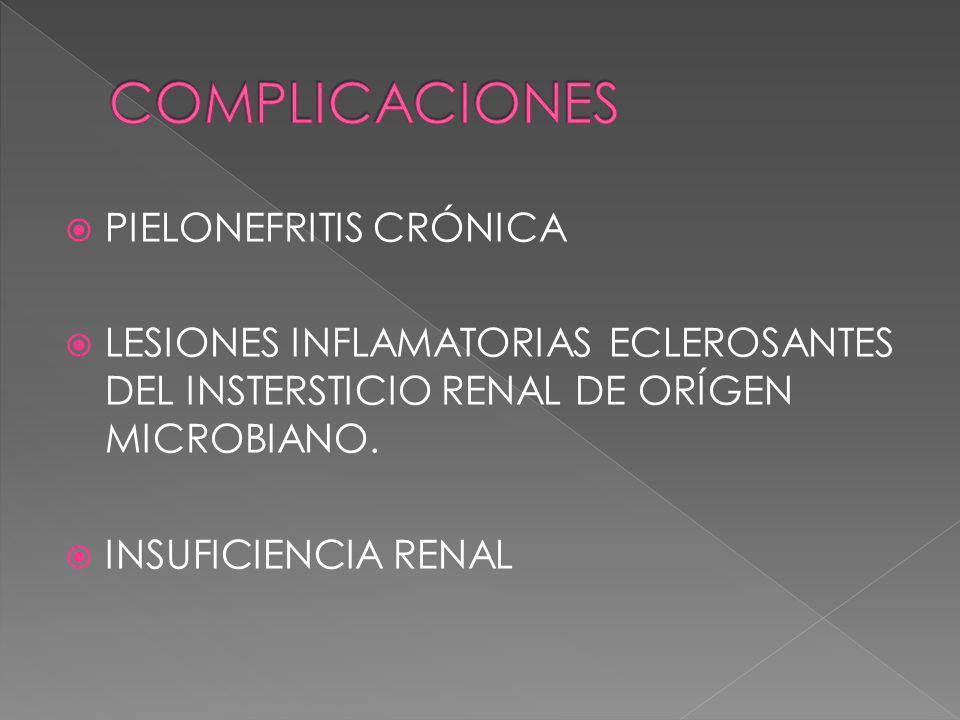PIELONEFRITIS CRÓNICA LESIONES INFLAMATORIAS ECLEROSANTES DEL INSTERSTICIO RENAL DE ORÍGEN MICROBIANO. INSUFICIENCIA RENAL