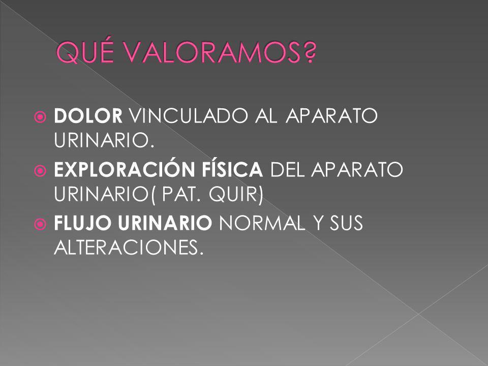 CARACTERÍSTICAS DE LA MICCIÓN: PATRÓN HABITUAL; FRECUENCIA DE MICCIONES, POLIURIA, POLAQUIURIA,OLIGURIA,ANURIA, NICTURIA,ENURESIS, INCONTINENCIA(TOTAL O PARCIAL) DISURIA VOLÚMEN URINARIO(30CC/KG/DÍA) FUERZA Y UBICACIÓN DEL CHORRO