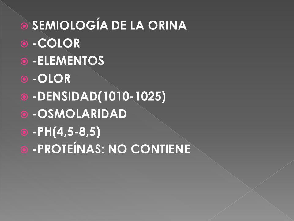 SEMIOLOGÍA DE LA ORINA -COLOR -ELEMENTOS -OLOR -DENSIDAD(1010-1025) -OSMOLARIDAD -PH(4,5-8,5) -PROTEÍNAS: NO CONTIENE