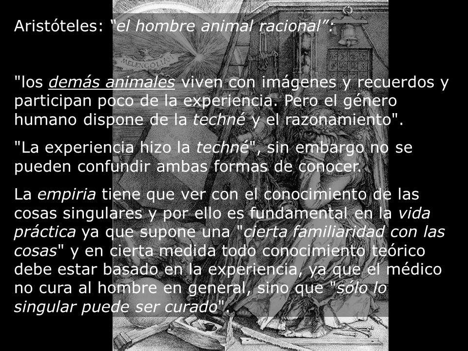 Aristóteles: el hombre animal racional: los demás animales viven con imágenes y recuerdos y participan poco de la experiencia.