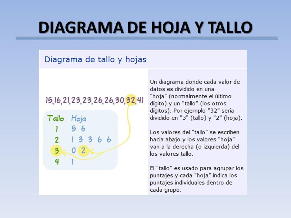 DIAGRAMA DE HOJA Y TALLO