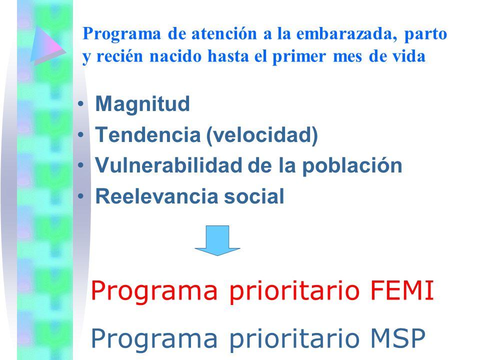 Magnitud Tendencia (velocidad) Vulnerabilidad de la población Reelevancia social Programa prioritario FEMI Programa prioritario MSP Programa de atenci