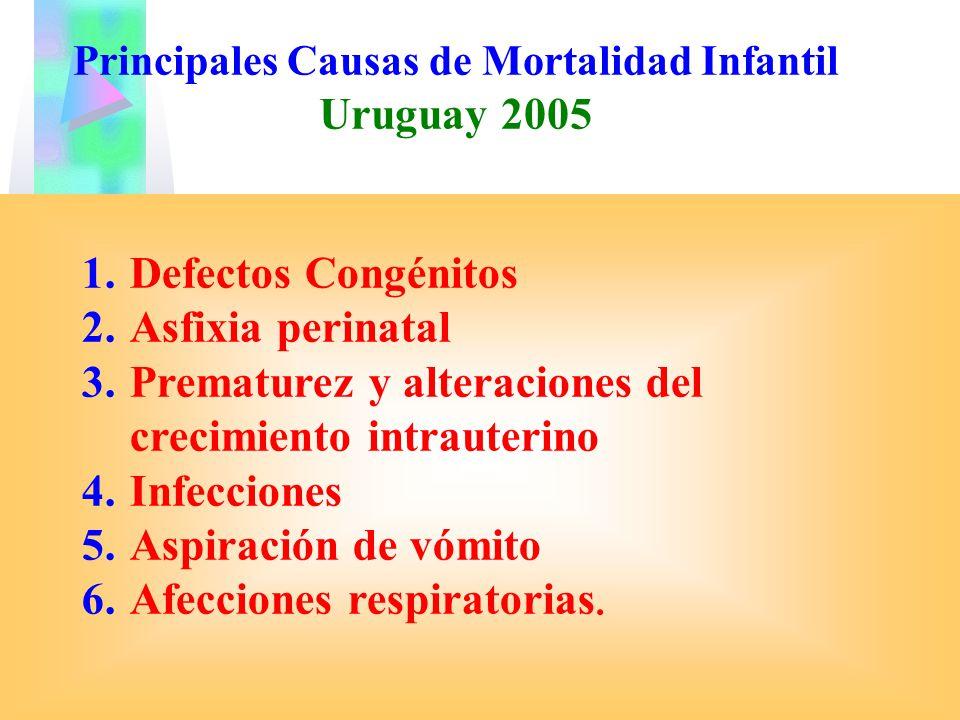 Principales Causas de Mortalidad Infantil Uruguay 2005 1.Defectos Congénitos 2.Asfixia perinatal 3.Prematurez y alteraciones del crecimiento intrauter