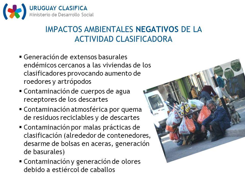 URUGUAY CLASIFICA Ministerio de Desarrollo Social Generación de extensos basurales endémicos cercanos a las viviendas de los clasificadores provocando