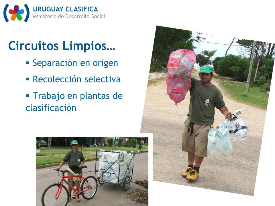 URUGUAY CLASIFICA Ministerio de Desarrollo Social Separación en origen Recolección selectiva Trabajo en plantas de clasificación Circuitos Limpios…