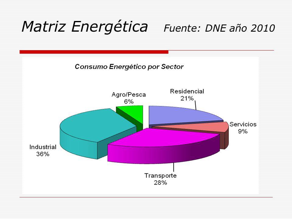 Matriz Energética Fuente: DNE año 2010