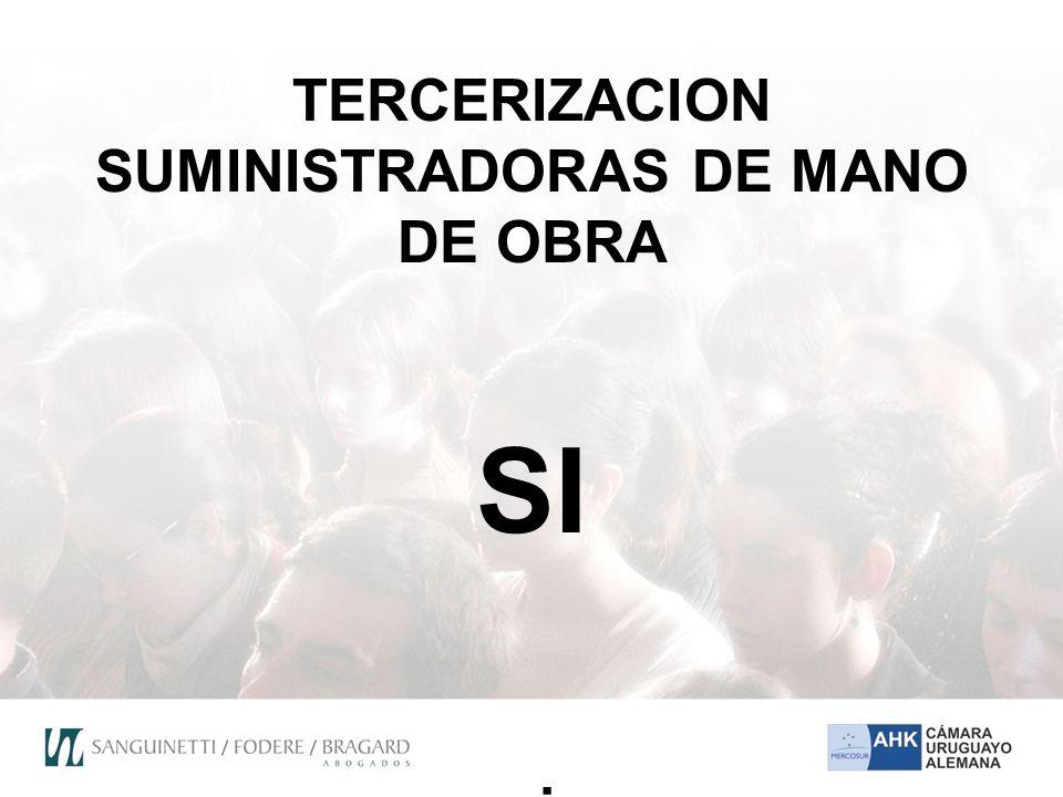 TERCERIZACION SUMINISTRADORAS DE MANO DE OBRA SI si
