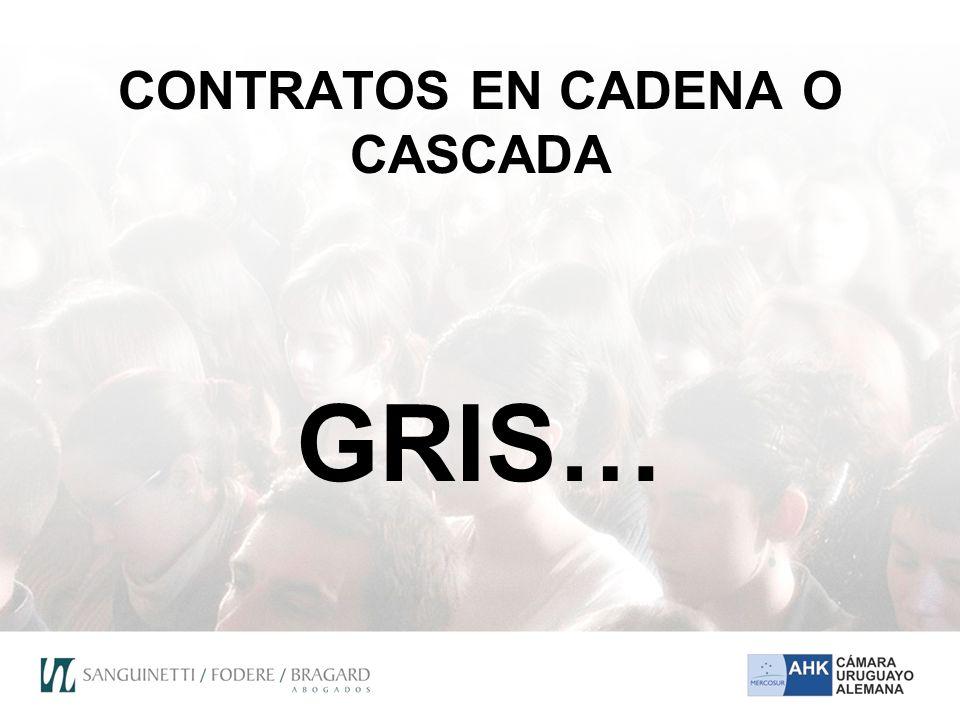 CONTRATOS EN CADENA O CASCADA GRIS…