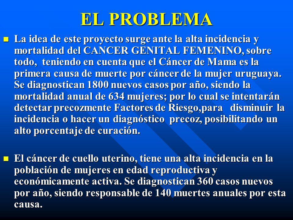 EL PROBLEMA La idea de este proyecto surge ante la alta incidencia y mortalidad del CANCER GENITAL FEMENINO, sobre todo, teniendo en cuenta que el Cán