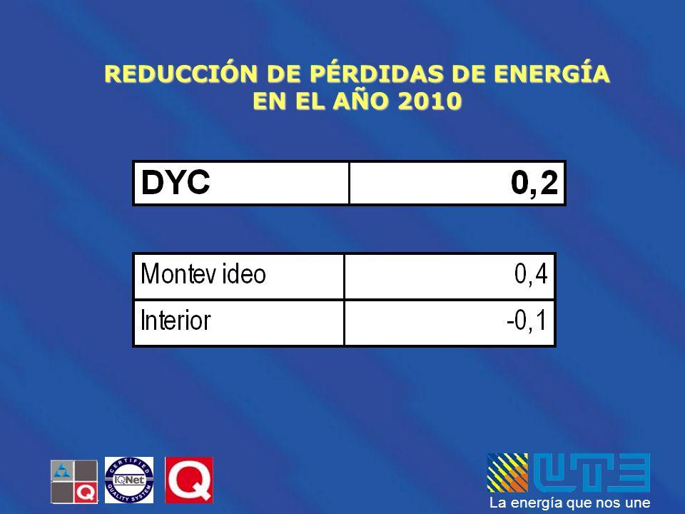 La energía que nos une REDUCCIÓN DE PÉRDIDAS DE ENERGÍA EN EL AÑO 2010