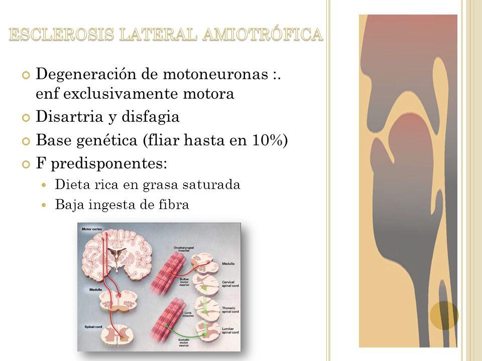 Degeneración de motoneuronas :. enf exclusivamente motora Disartria y disfagia Base genética (fliar hasta en 10%) F predisponentes: Dieta rica en gras