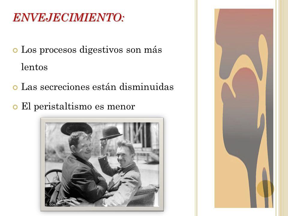 ENVEJECIMIENTO: Los procesos digestivos son más lentos Las secreciones están disminuidas El peristaltismo es menor