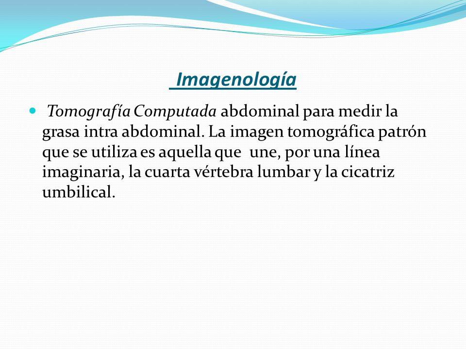 Imagenología Tomografía Computada abdominal para medir la grasa intra abdominal. La imagen tomográfica patrón que se utiliza es aquella que une, por u