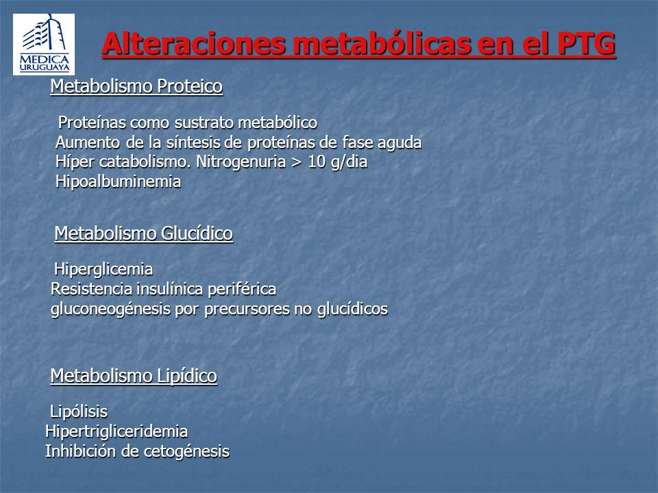 Cantidad y Composición Proteínas 20-25% del aporte calórico Debe intentarse disminuir el balance nitrogenado negativo El aporte debe ser 1,5-2 g/k/día La relación calorías no nitrogenadas/g Nitrógeno debe ser entre 80-100/1 Hidratos de Carbono 50 -60% de los requerimientos totales No debe superarse la capacidad de oxidación de glucosa (4-7 mg/k/min) La administración excesiva de glucosa se asocia a estados hiperosmolares, producción aumentada de CO2, esteatosis e hiperglicemia.