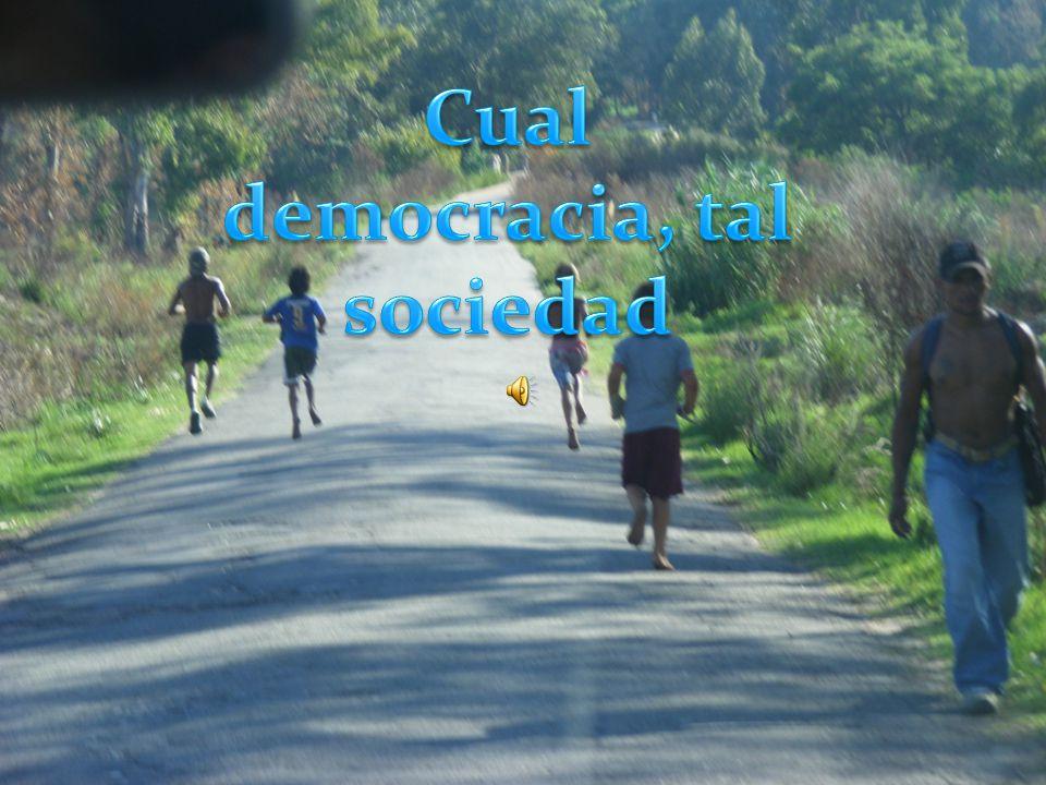 . La Democracia Representativa se conceptualiza y asume como la única forma de democracia