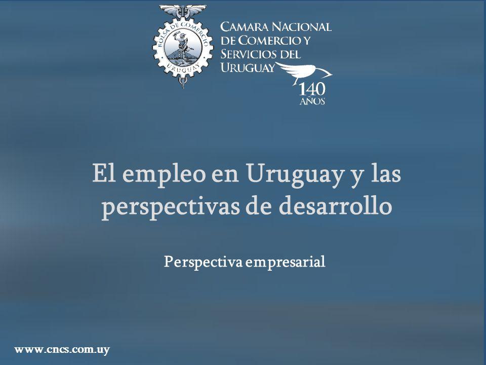 El empleo en Uruguay y las perspectivas de desarrollo www.cncs.com.uy Perspectiva empresarial