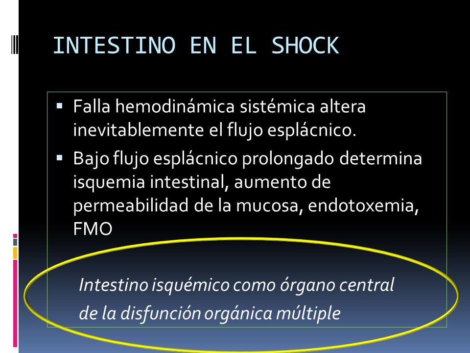 INTESTINO EN EL SHOCK Falla hemodinámica sistémica altera inevitablemente el flujo esplácnico. Bajo flujo esplácnico prolongado determina isquemia int