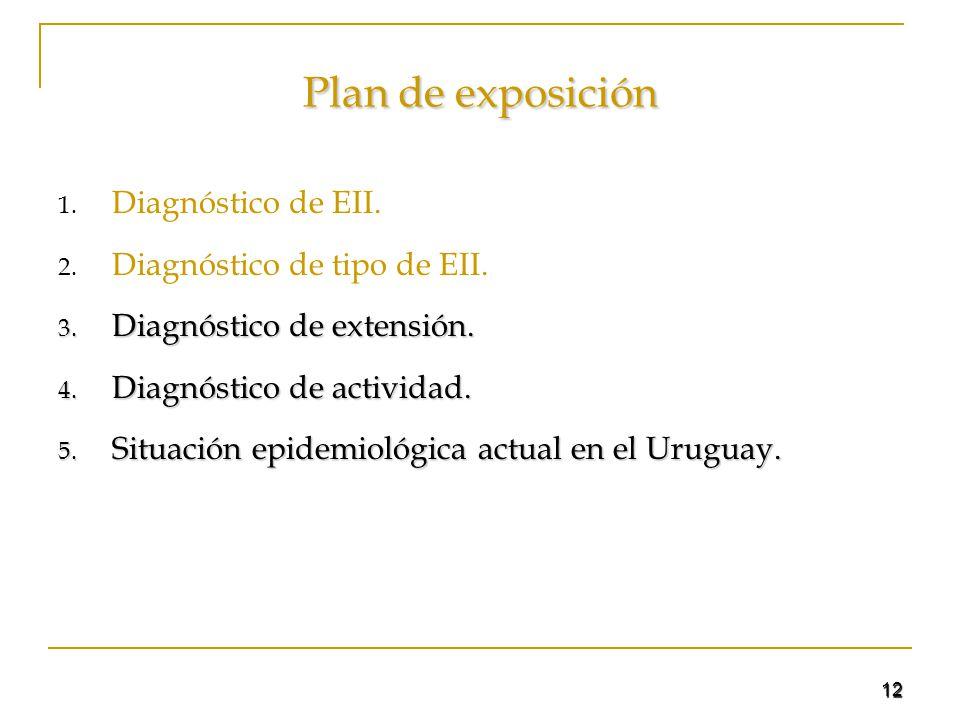 12 Plan de exposición 1. Diagnóstico de EII. 2. Diagnóstico de tipo de EII. 3. Diagnóstico de extensión. 4. Diagnóstico de actividad. 5. Situación epi