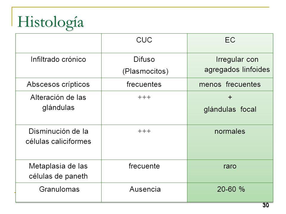 30Histología