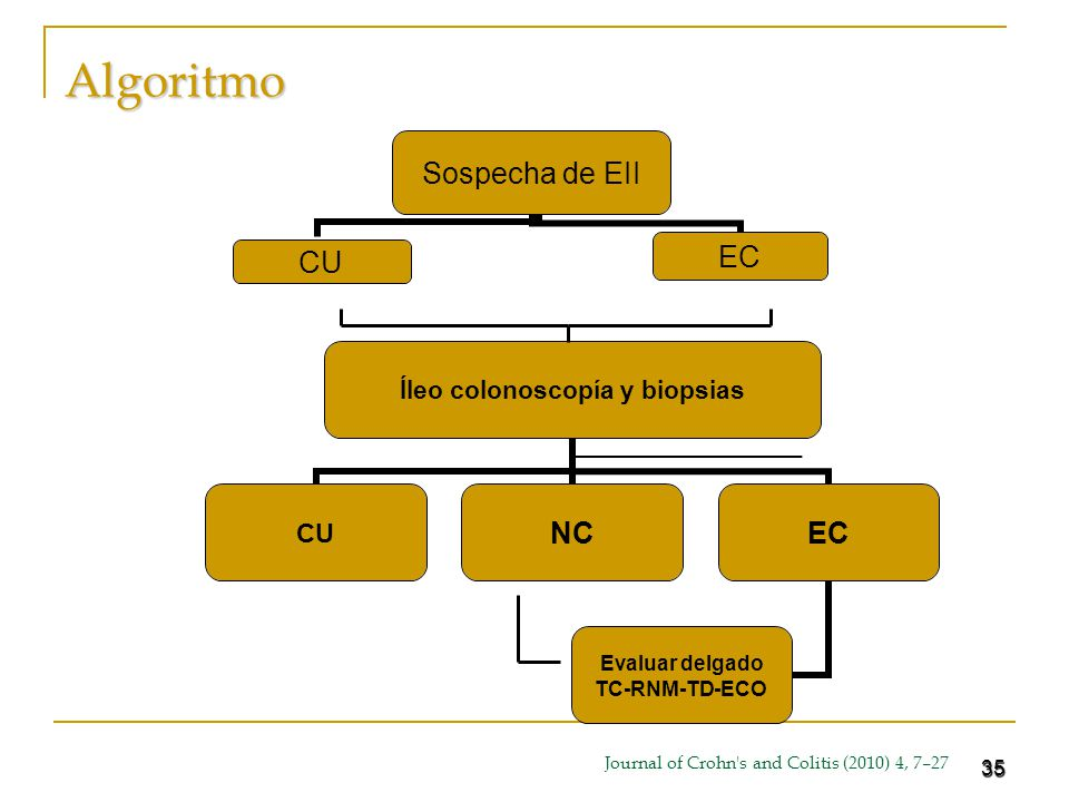 35Algoritmo Íleo colonoscopía y biopsias CUNCEC Evaluar delgado TC-RNM-TD- ECO Journal of Crohn's and Colitis (2010) 4, 7–27