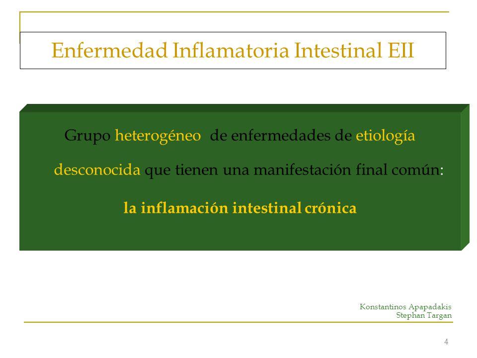 5 Fisiopatología de la EII La inflamación se relaciona con una respuesta anormal del sistema inmune frente a un antígeno ambiental en un huésped genéticamente susceptible.