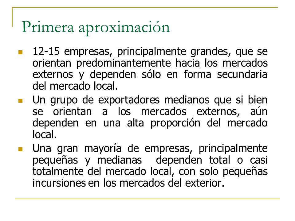 Primera aproximación 12-15 empresas, principalmente grandes, que se orientan predominantemente hacia los mercados externos y dependen sólo en forma se