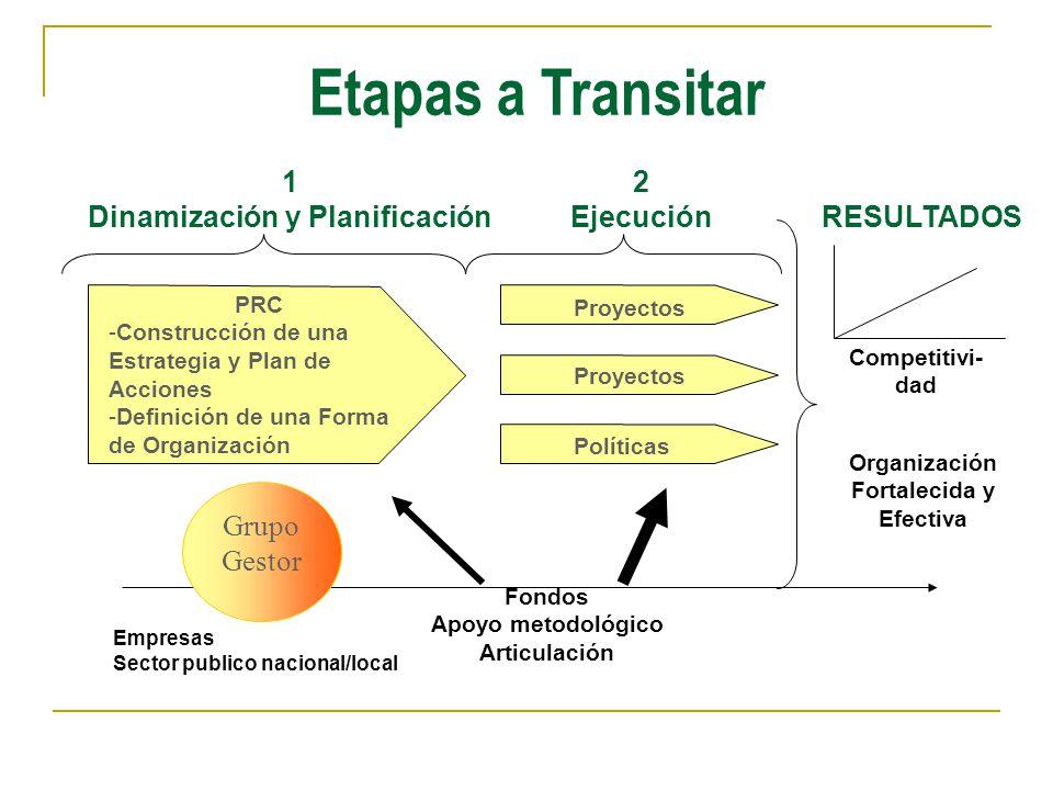 PRC -Construcción de una Estrategia y Plan de Acciones -Definición de una Forma de Organización Proyectos Políticas 1 Dinamización y Planificación Fon