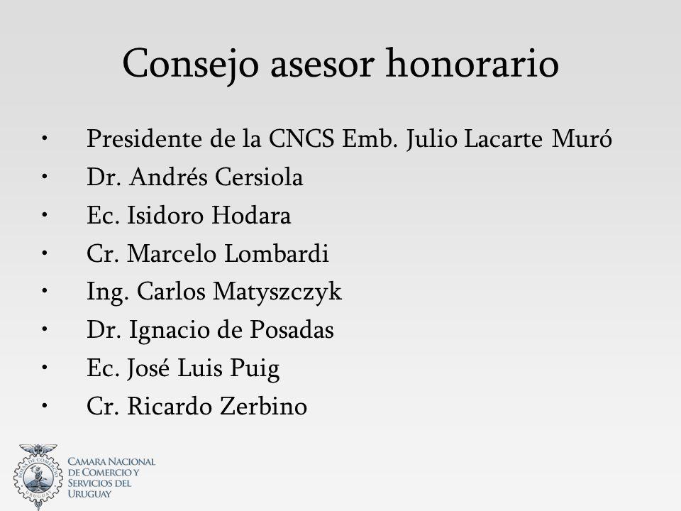 Consejo asesor honorario Presidente de la CNCS Emb.