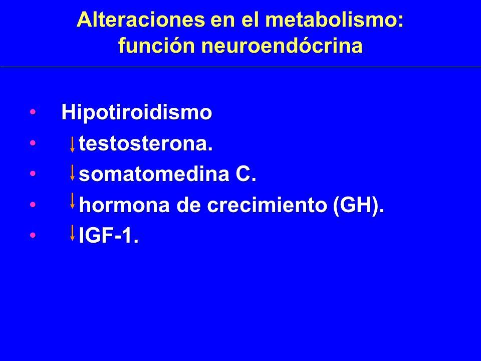 Alteraciones en el metabolismo: función neuroendócrina HipotiroidismoHipotiroidismo testosterona.