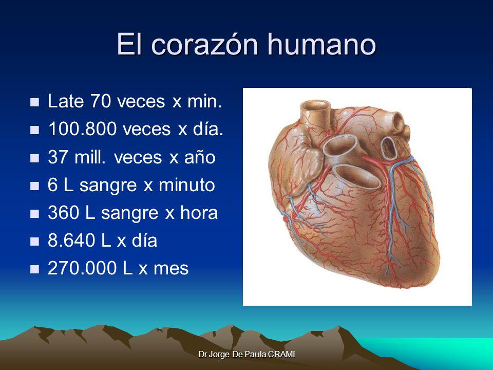 Dr Jorge De Paula CRAMI El corazón humano Late 70 veces x min.