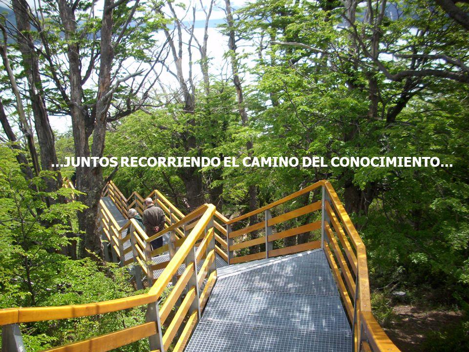 Lic TERESA CORREA CRAMI 20105 …JUNTOS RECORRIENDO EL CAMINO DEL CONOCIMIENTO…