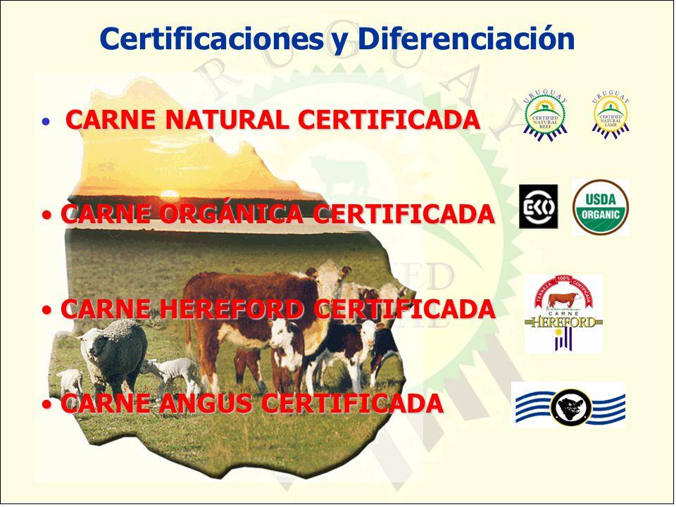 CARNE NATURAL CERTIFICADA CARNE NATURAL CERTIFICADA CARNE ORGÁNICA CERTIFICADA CARNE ORGÁNICA CERTIFICADA CARNE HEREFORD CERTIFICADA CARNE HEREFORD CE