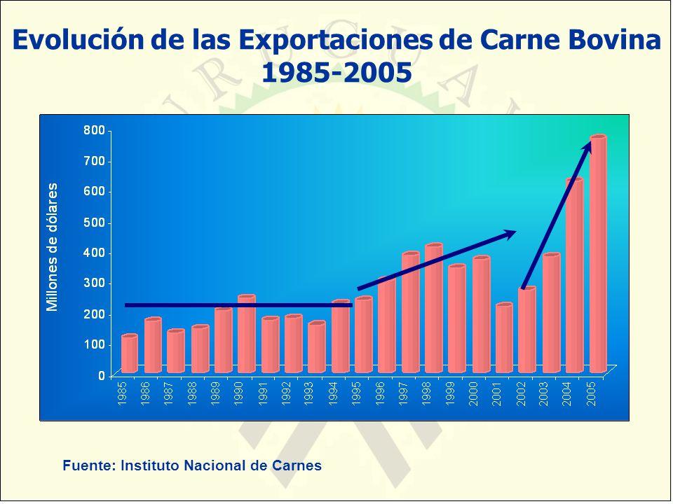 Evolución de las Exportaciones de Carne Bovina 1985-2005 Fuente: Instituto Nacional de Carnes