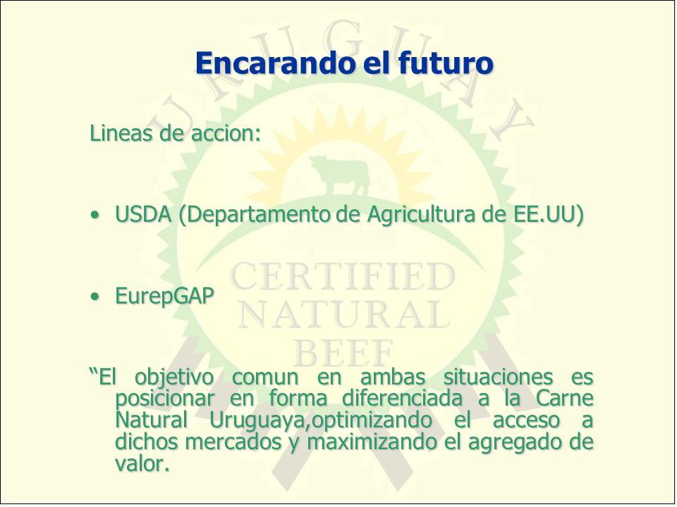 Encarando el futuro Lineas de accion: USDA (Departamento de Agricultura de EE.UU)USDA (Departamento de Agricultura de EE.UU) EurepGAPEurepGAP El objet