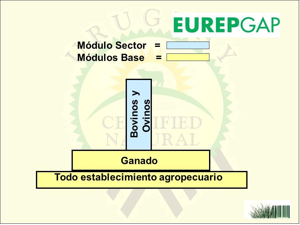 Todo establecimiento agropecuario Bovinos y Ovinos Módulo Sector = Módulos Base = Ganado
