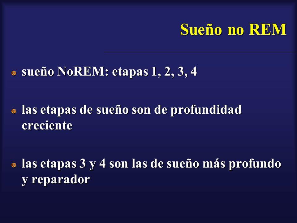 Sueño no REM sueño NoREM: etapas 1, 2, 3, 4 sueño NoREM: etapas 1, 2, 3, 4 las etapas de sueño son de profundidad creciente las etapas de sueño son de