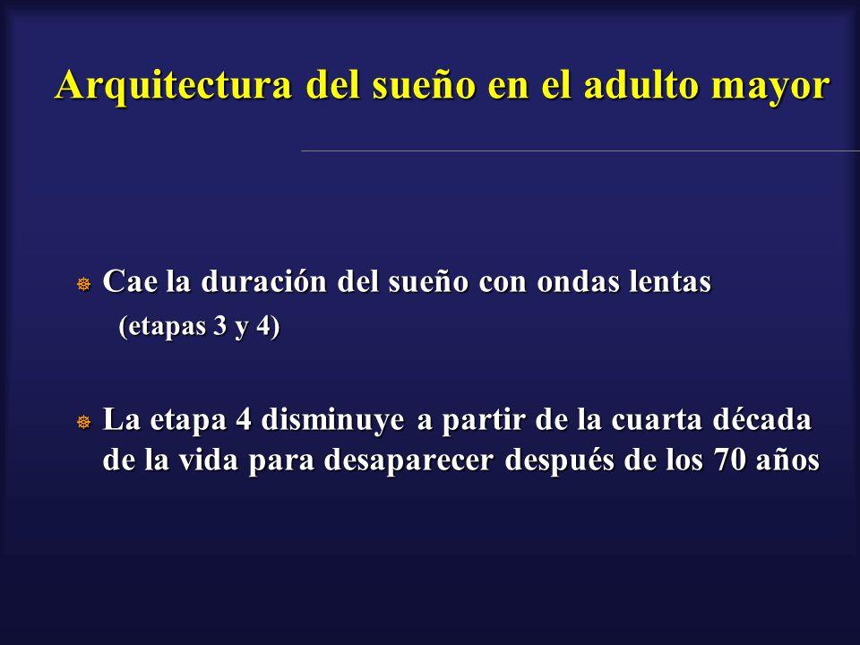Arquitectura del sueño en el adulto mayor Cae la duración del sueño con ondas lentas Cae la duración del sueño con ondas lentas (etapas 3 y 4) La etap