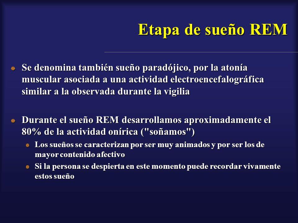 Etapa de sueño REM Se denomina también sueño paradójico, por la atonía muscular asociada a una actividad electroencefalográfica similar a la observada