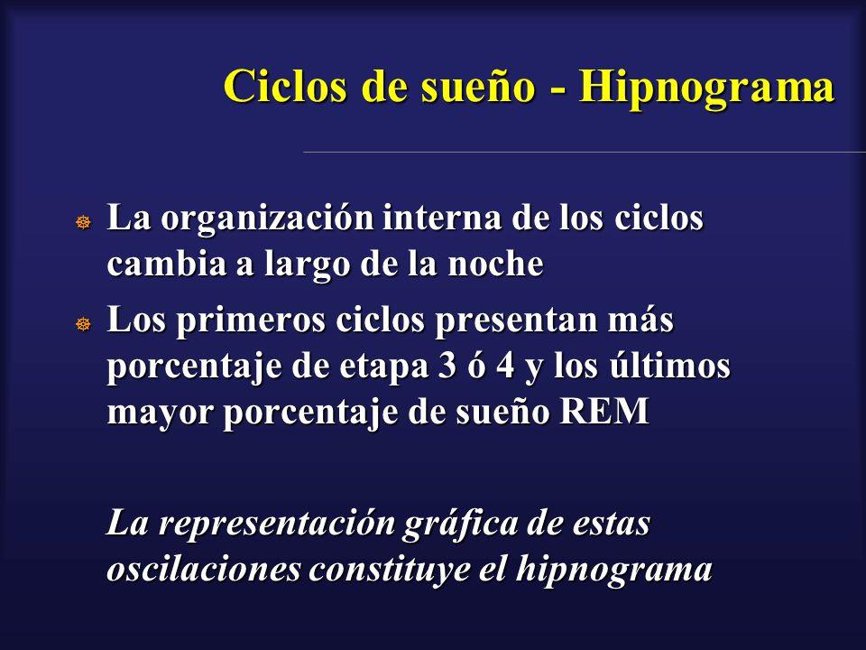 Ciclos de sueño - Hipnograma La organización interna de los ciclos cambia a largo de la noche La organización interna de los ciclos cambia a largo de