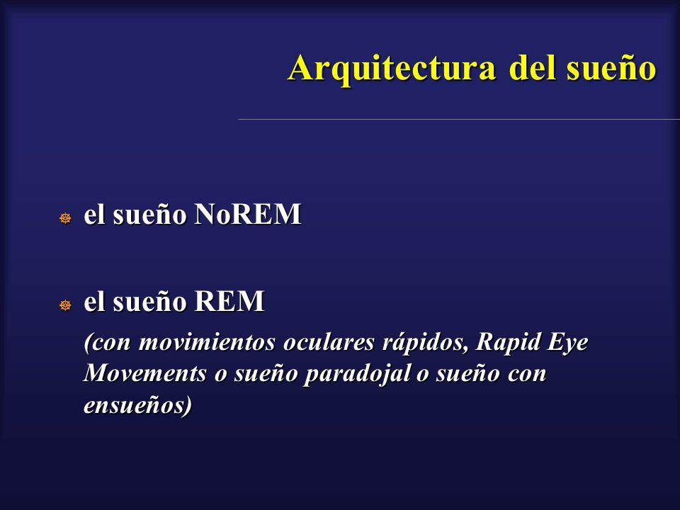 Arquitectura del sueño el sueño NoREM el sueño NoREM el sueño REM el sueño REM (con movimientos oculares rápidos, Rapid Eye Movements o sueño paradoja