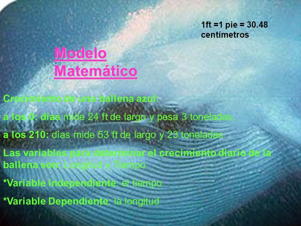 Modelo Matemático Crecimiento de una ballena azul: a los 0: días mide 24 ft de largo y pesa 3 toneladas, a los 210: días mide 53 ft de largo y 23 tone