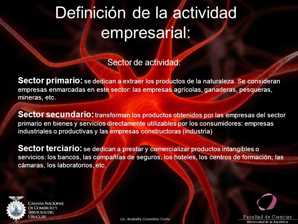 Definición de la actividad empresarial: Sector de actividad: Sector primario: se dedican a extraer los productos de la naturaleza. Se consideran empre