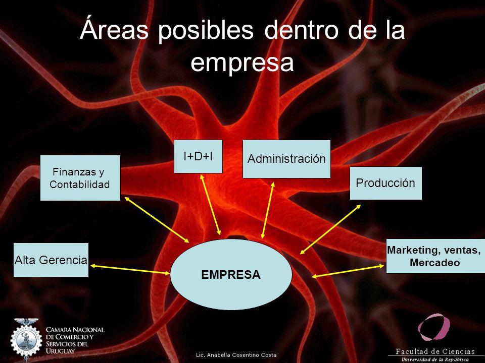 Áreas posibles dentro de la empresa EMPRESA Alta Gerencia Finanzas y Contabilidad I+D+I Administración Producción Marketing, ventas, Mercadeo