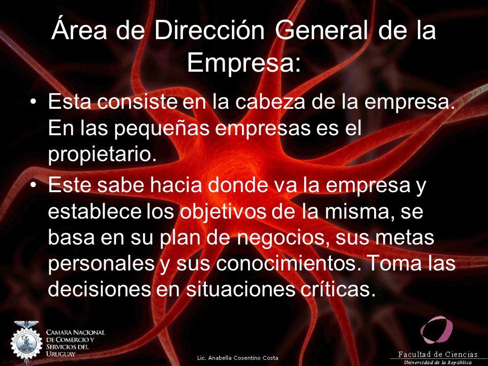 Área de Dirección General de la Empresa: Esta consiste en la cabeza de la empresa. En las pequeñas empresas es el propietario. Este sabe hacia donde v