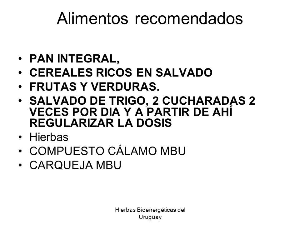 Hierbas Bioenergéticas del Uruguay Alimentos recomendados PAN INTEGRAL, CEREALES RICOS EN SALVADO FRUTAS Y VERDURAS. SALVADO DE TRIGO, 2 CUCHARADAS 2