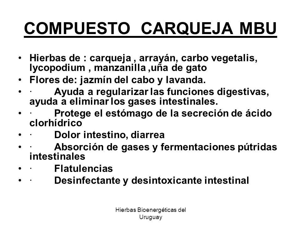 Hierbas Bioenergéticas del Uruguay COMPUESTO CARQUEJA MBU Hierbas de : carqueja, arrayán, carbo vegetalis, lycopodium, manzanilla,uña de gato Flores d