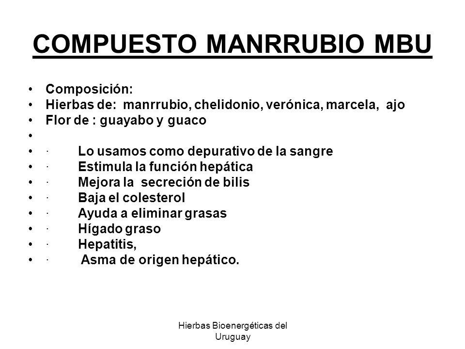 Hierbas Bioenergéticas del Uruguay COMPUESTO MANRRUBIO MBU Composición: Hierbas de: manrrubio, chelidonio, verónica, marcela, ajo Flor de : guayabo y