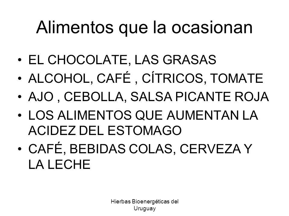 Hierbas Bioenergéticas del Uruguay Alimentos que la ocasionan EL CHOCOLATE, LAS GRASAS ALCOHOL, CAFÉ, CÍTRICOS, TOMATE AJO, CEBOLLA, SALSA PICANTE ROJ